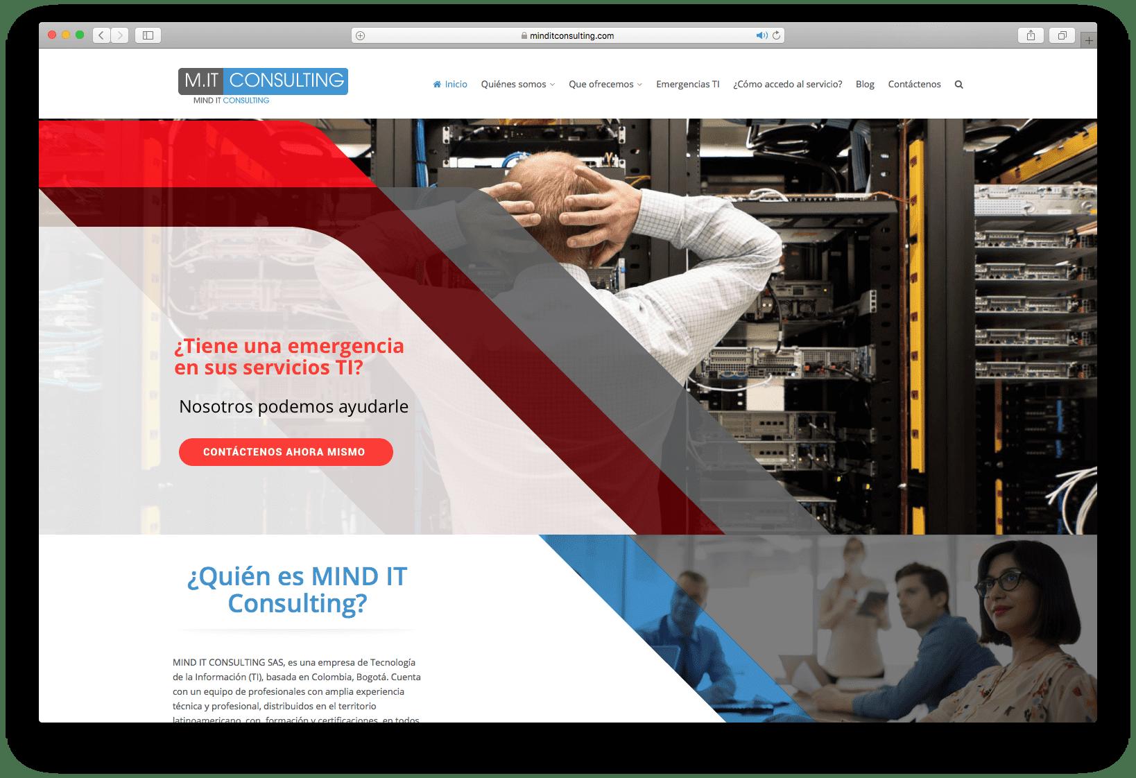 Herramienta web cliente mind it consulting